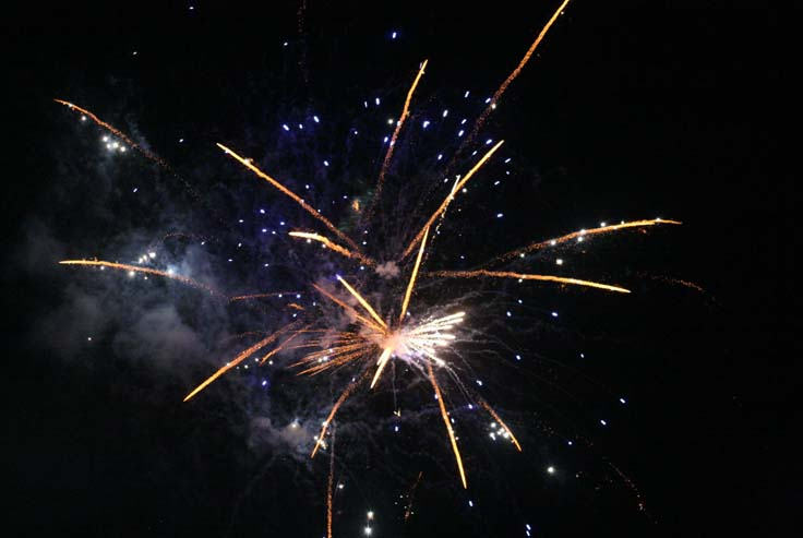 FIREWORKS: THANK YOU